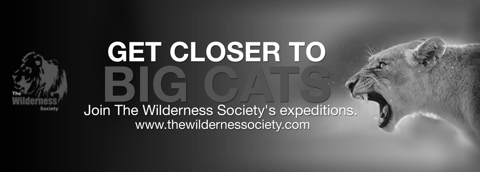 wilderness-society-1