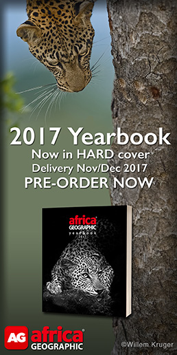 AG Yearbook 2017