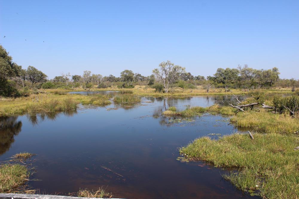 The Khwai River in Botswana