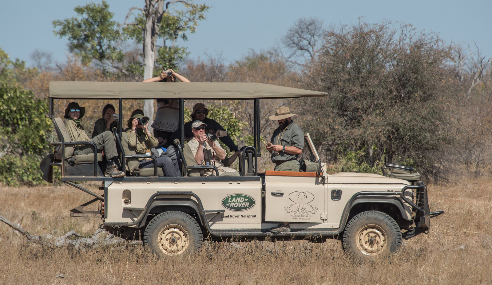Animal spotting from a safari vehicle