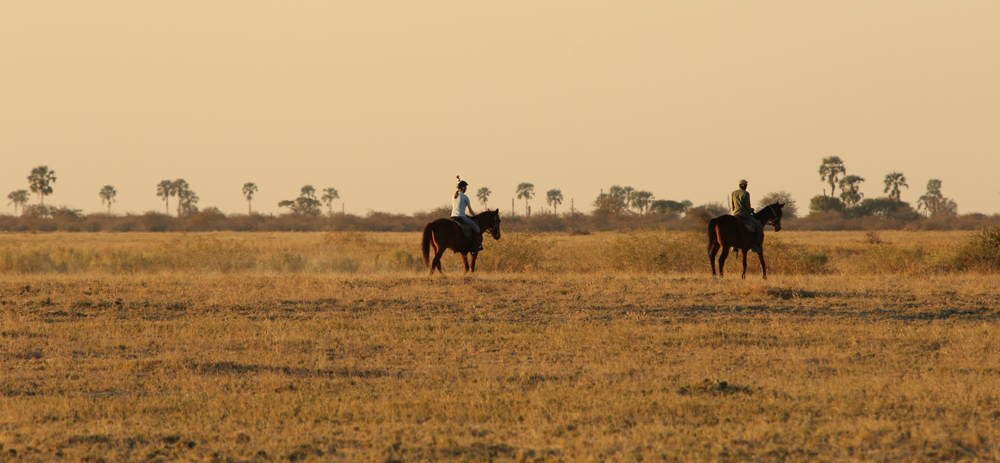 Riding through the grassy plains of Makgadikgadi