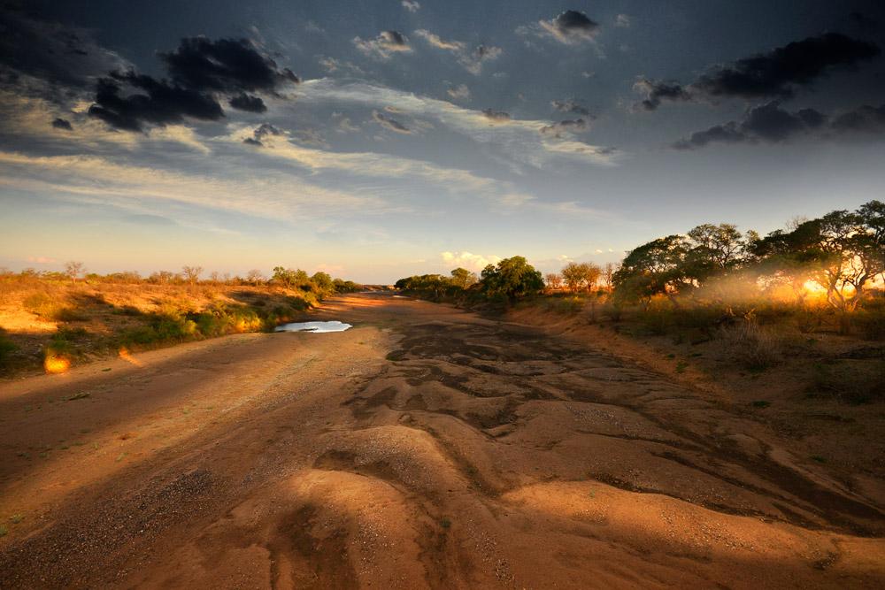 Adry riverbed, Kruger National Park, South Africa