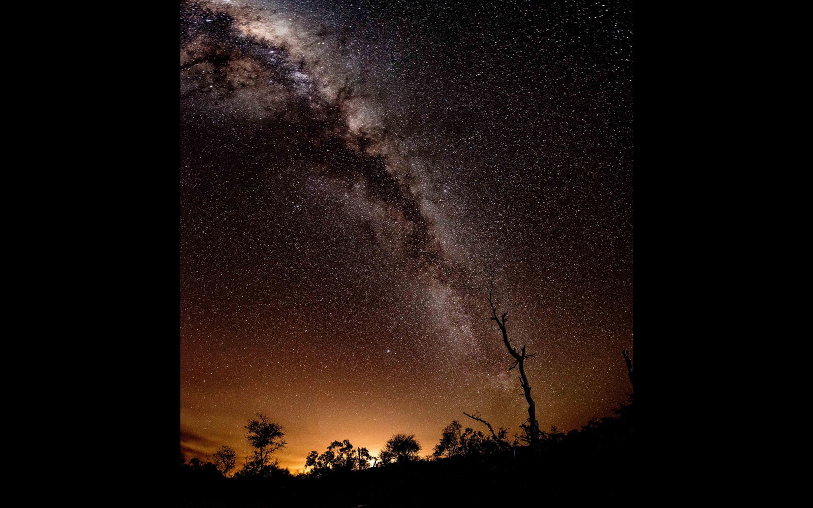 The Milky Way in Klaserie, Greater Kruger National Park, South Africa © Tim Feherty