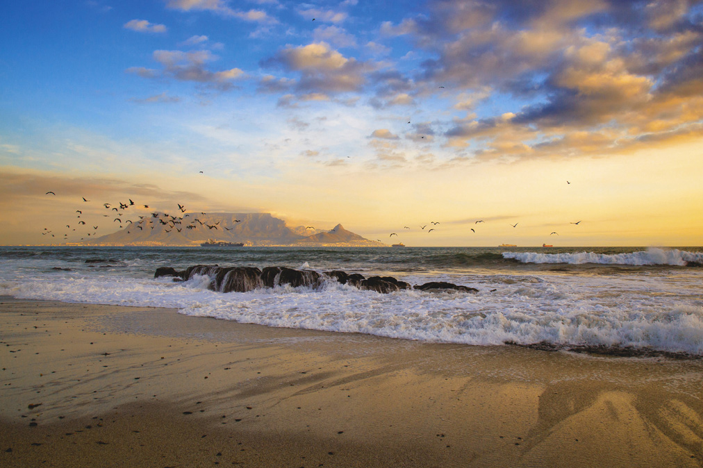 Birds flocking in front of Table Mountain at sunset ©Ilonde van Hoolwerff