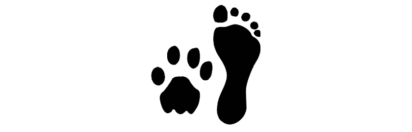 FOOT-PAW PRINTS