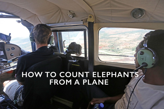 How-to-count