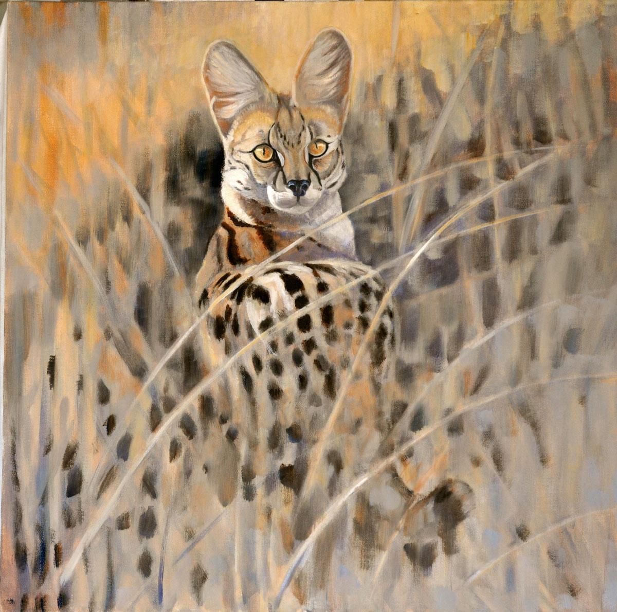 Serval-cat--24'-x-24'