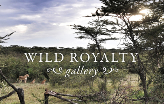 WILD ROYALTY BAR