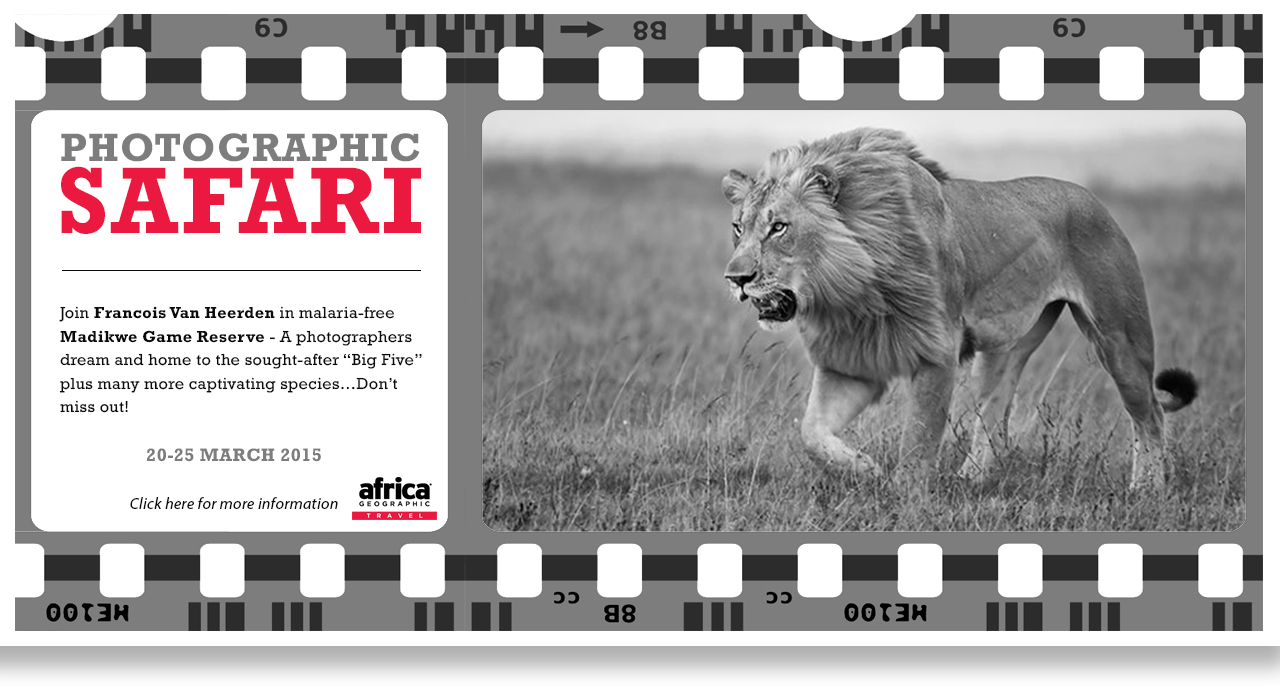 MIA_Phographic_Safari_v2
