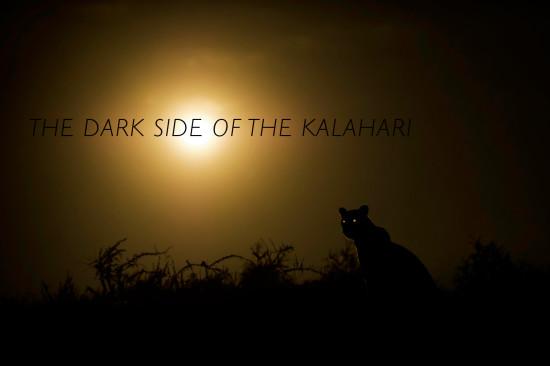 dark-side-kalahari-hannes-lochner-