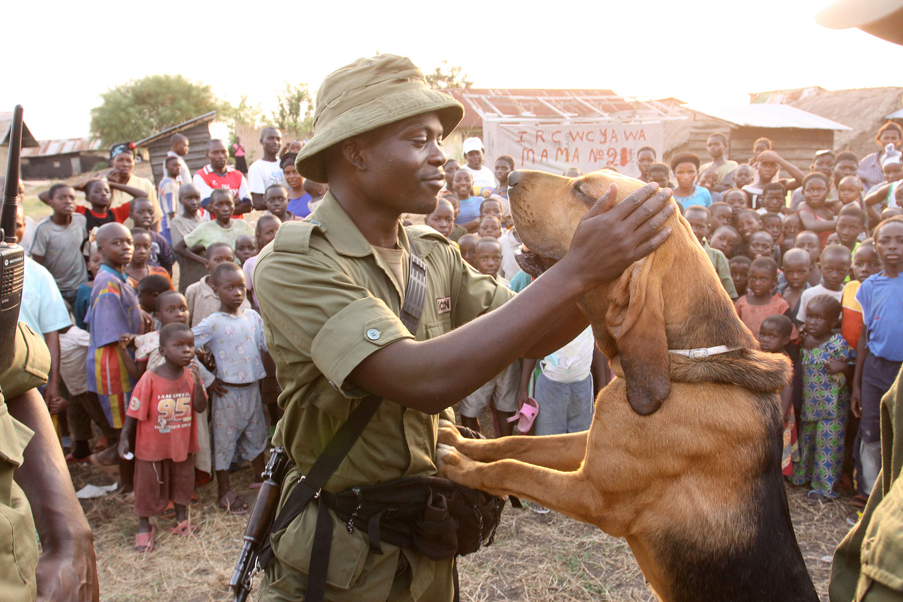 Congo-hounds-community