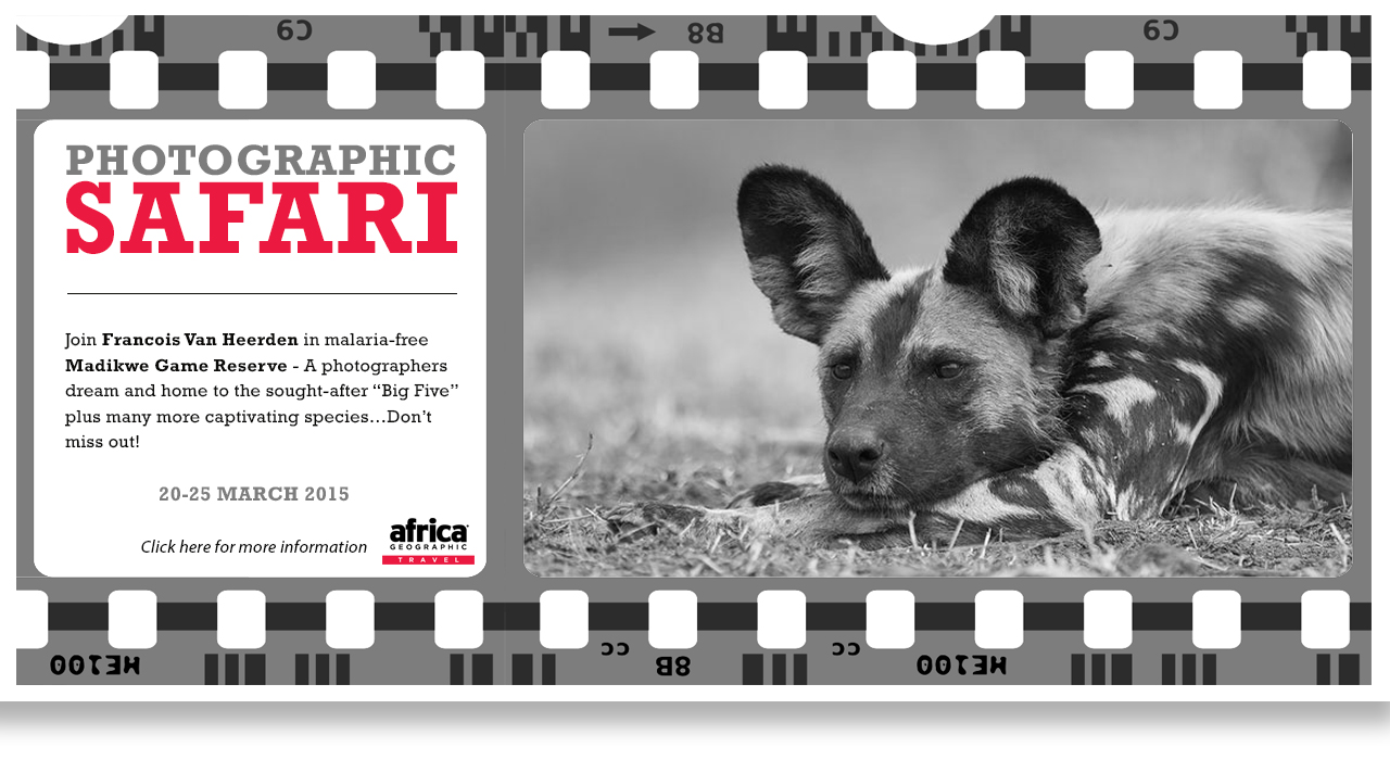 MIA_Phographic_Safari_v3