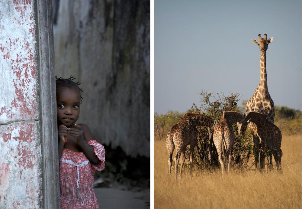 girl-and-giraffe-2