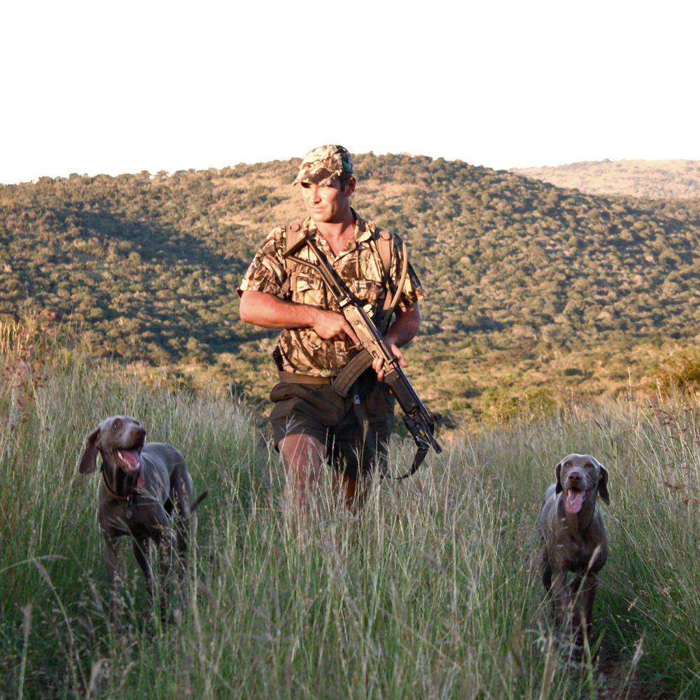 Dog Training Weekly Magazine