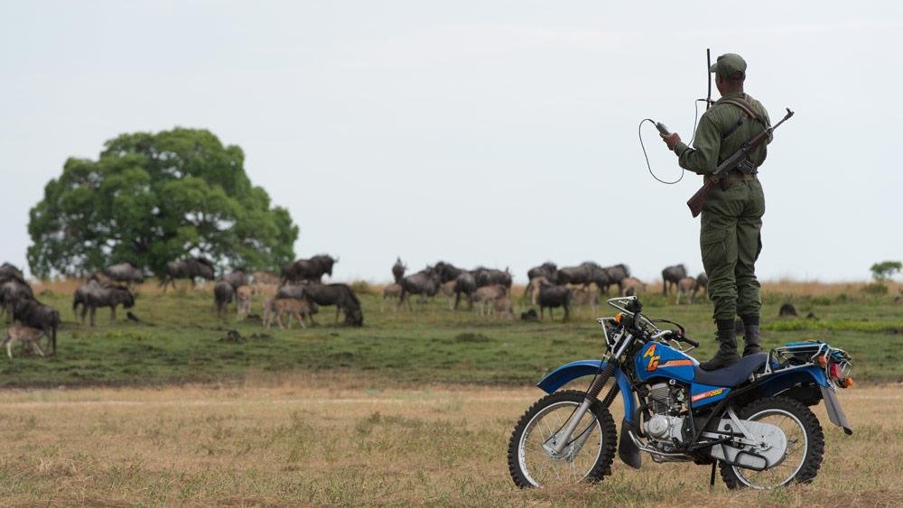ranger liuwa zambia