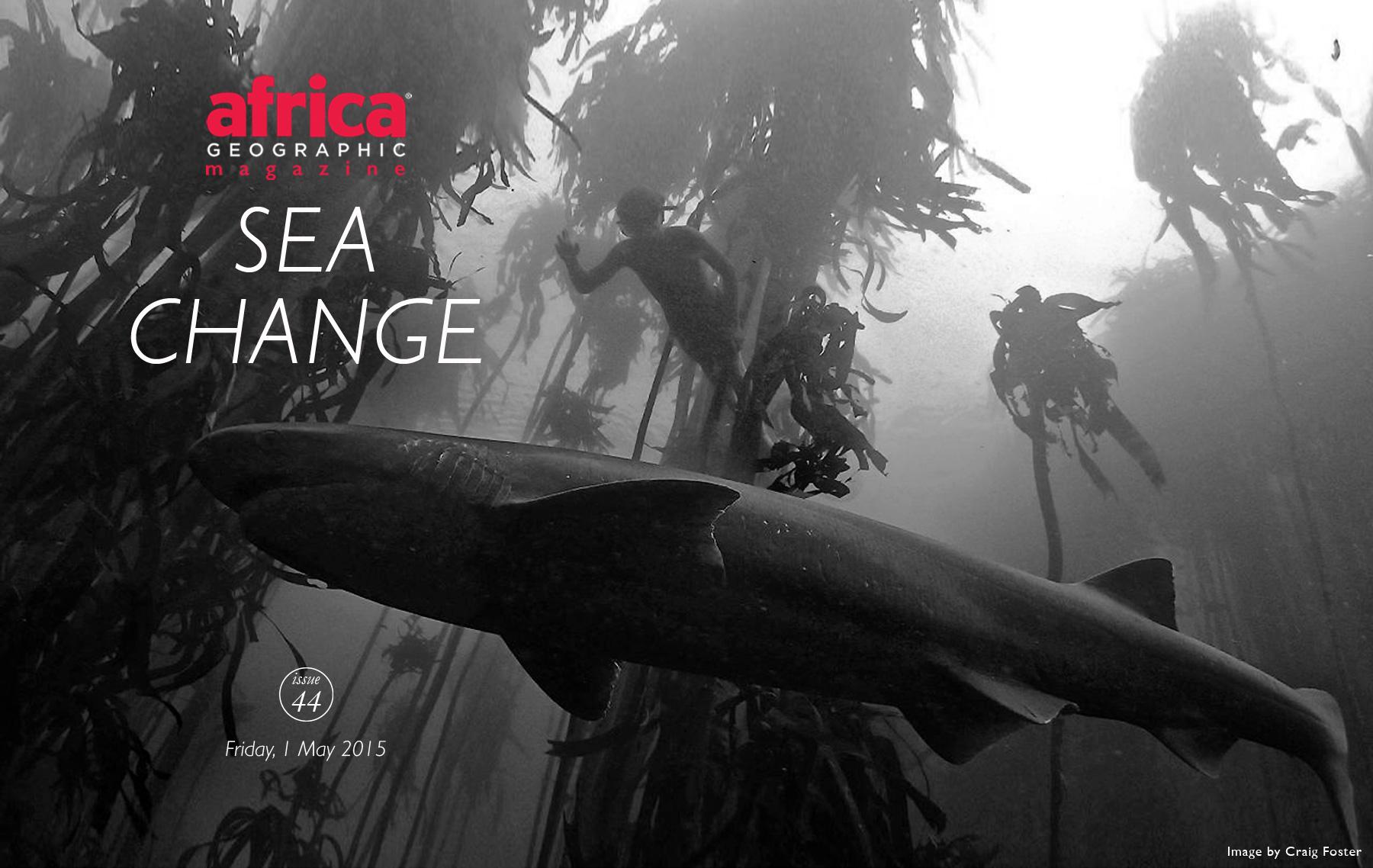 SEA-CHANGE-cover-8