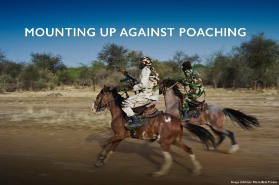 horse-patrols-header_Babi-Prokas_Zakouma