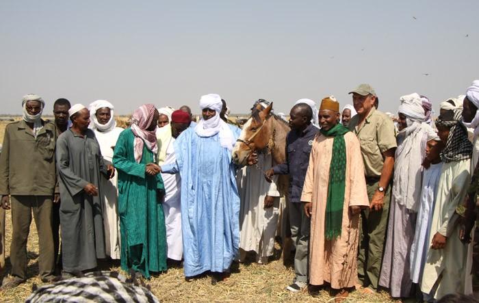horses-chad-nomads-zakouma