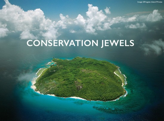 CONSERVATION-COVER-44