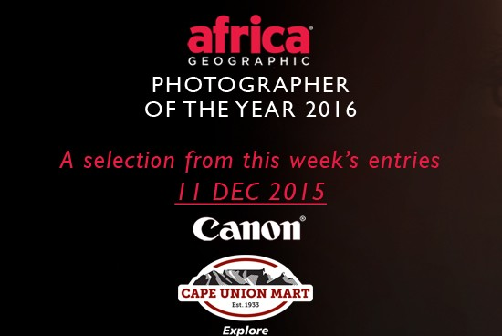 africa-geographic-photographer-of-the-year-week-2