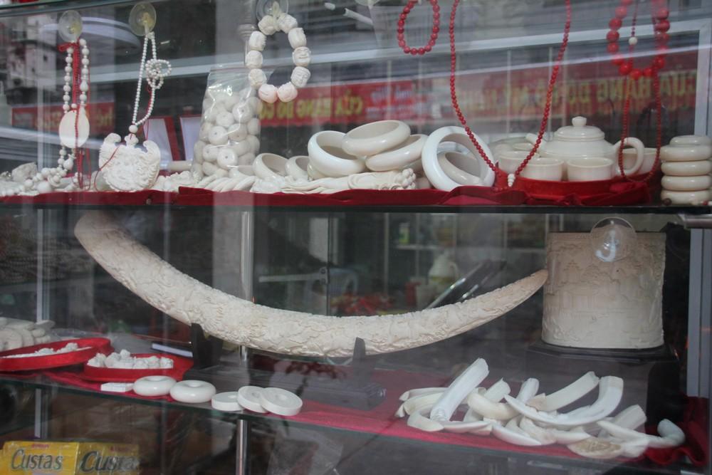 open-sale-of-ivory