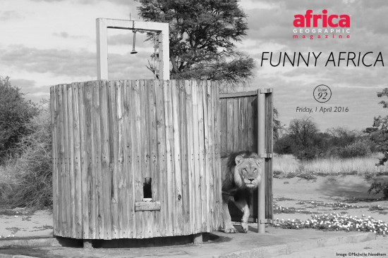 funny-africa