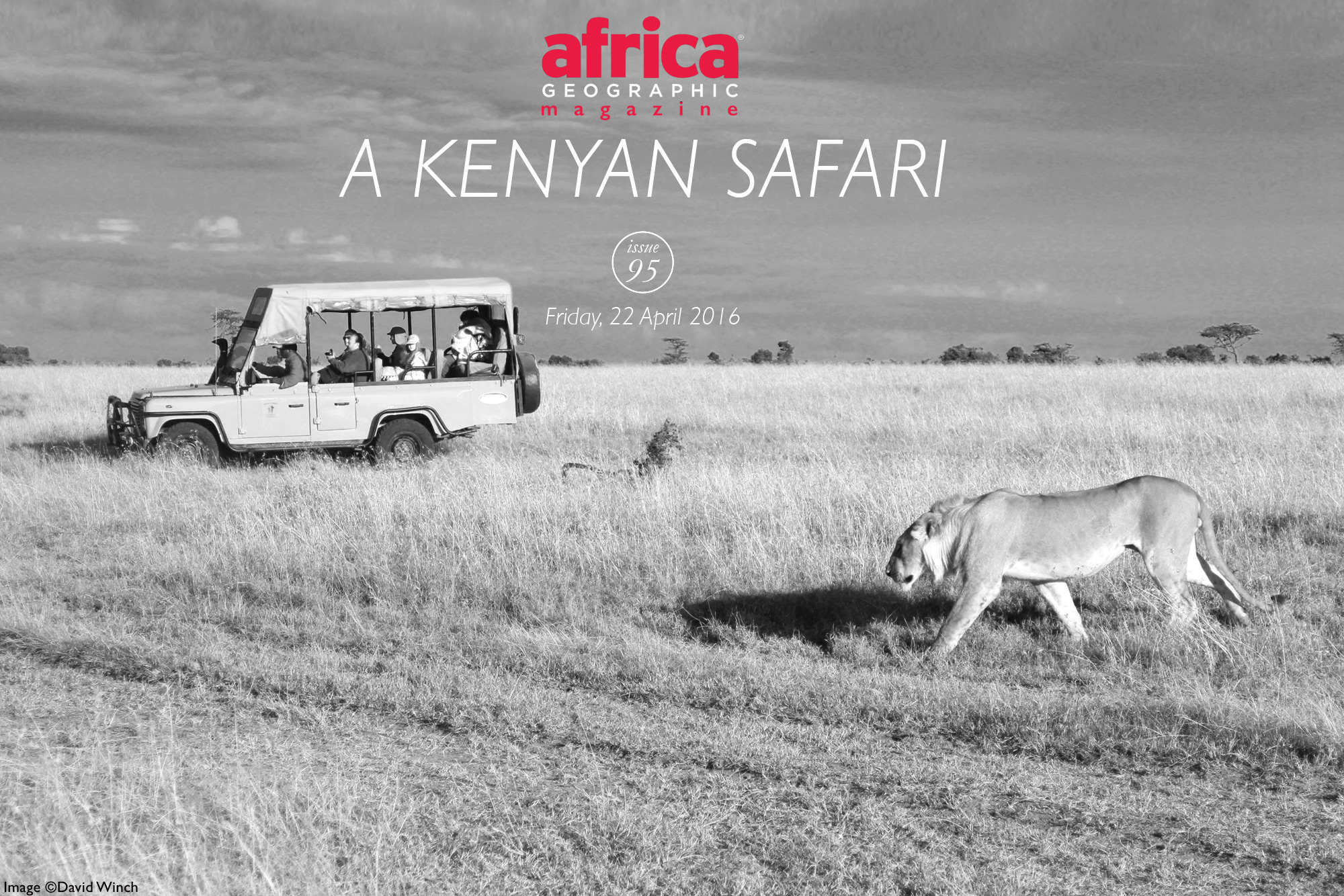 a-kenyan-safari