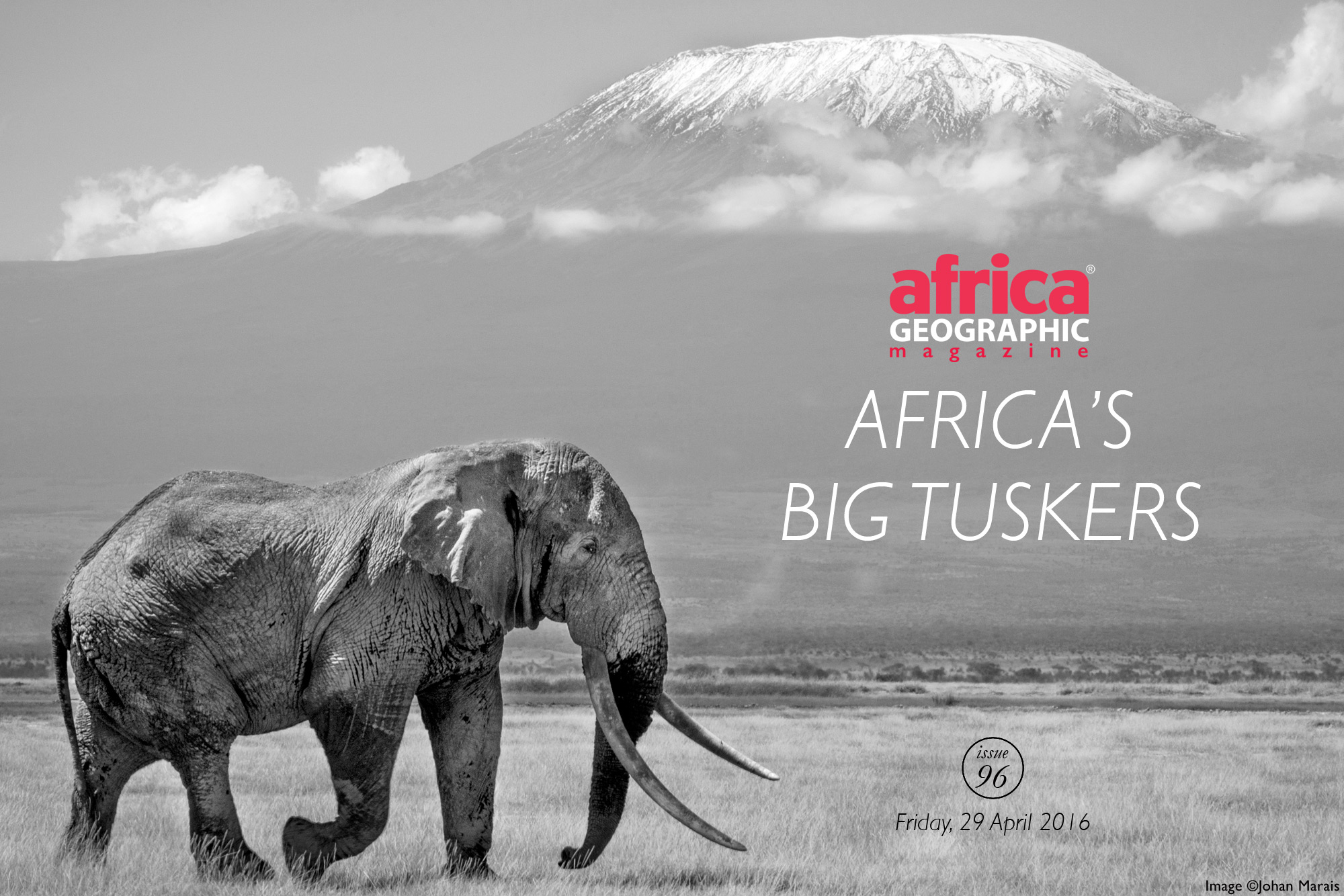 africas-big-tuskers-cover-johan-marais copy
