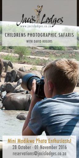 jacis-lodges-childrens-photographic-safaris