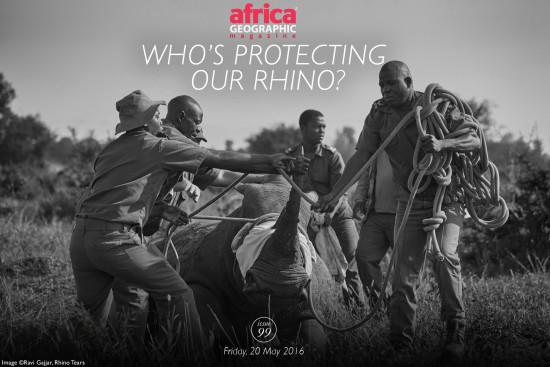 whos-protecting-our-rhino-ravi-gajjar
