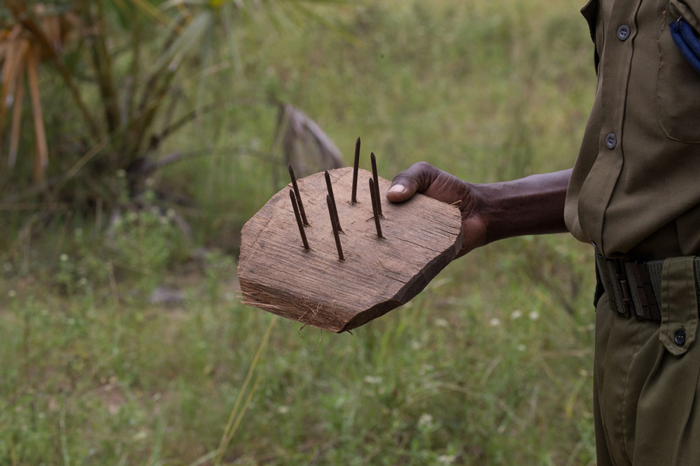 A poacher's trap that was confiscated by anti-poaching teams ©Joachim Schmeisser and The David Sheldrick Wildlife Trust
