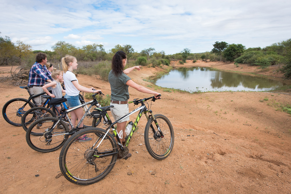 Go on a two-wheeled safari at Unembeza Boutique Lodge in the Hoedspruit Wildlife Estate ©Unembeza Boutique Lodge
