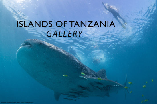 tanzanian-islands