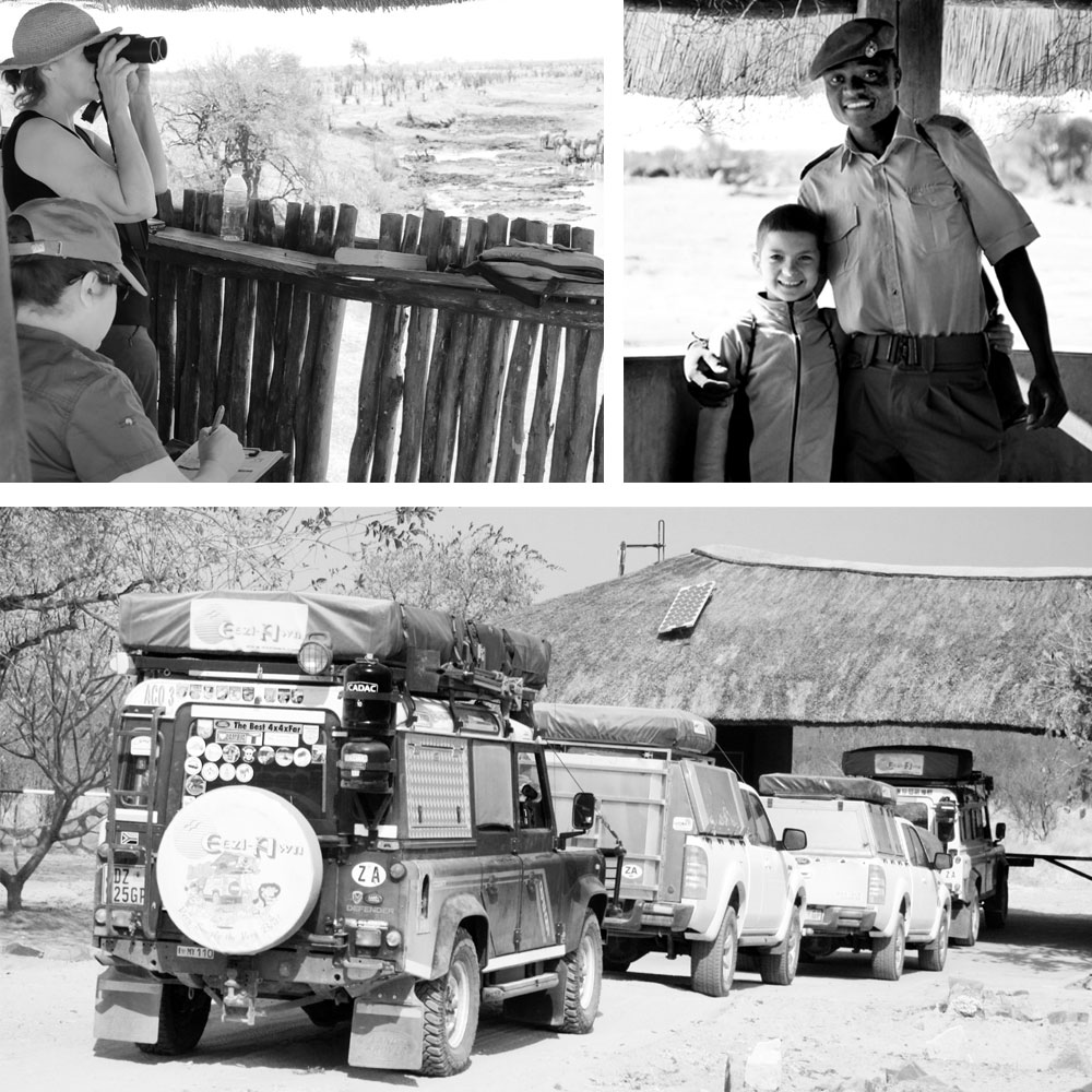 Clockwise from left: WEZ volunteers scanning and recording as zebras drink at Big Toms Hide © Tony Park; Making friends with the Hwange Park Rangers ©Annelien Oberholzer; An unusual sight: vehicles queueing to enter Hwange ©Annelien Oberholzer