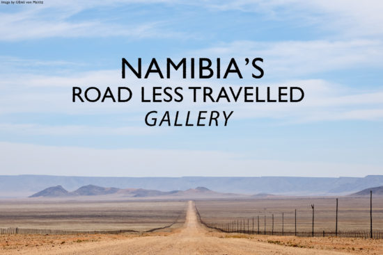 less-travelled-road-namibia