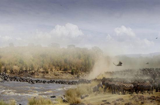 20-Shirli-Carswell-Mara-Epic-Kenya