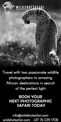 wildshot-safaris-2