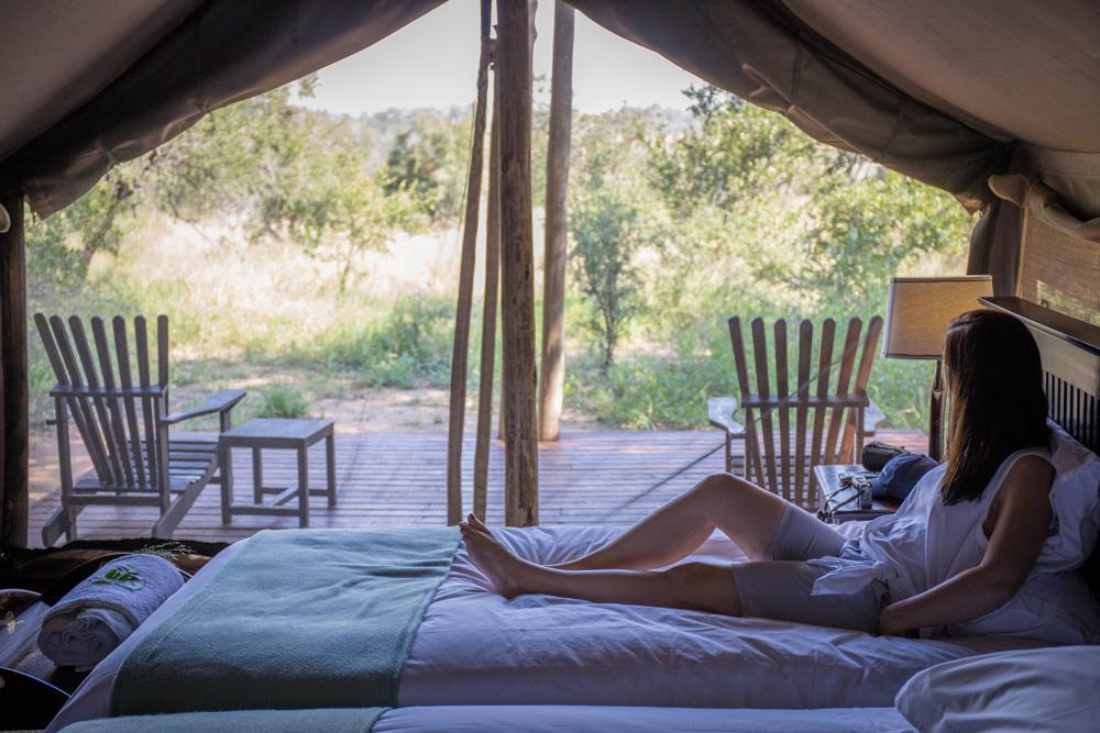 Kruger National Park Plains Camp
