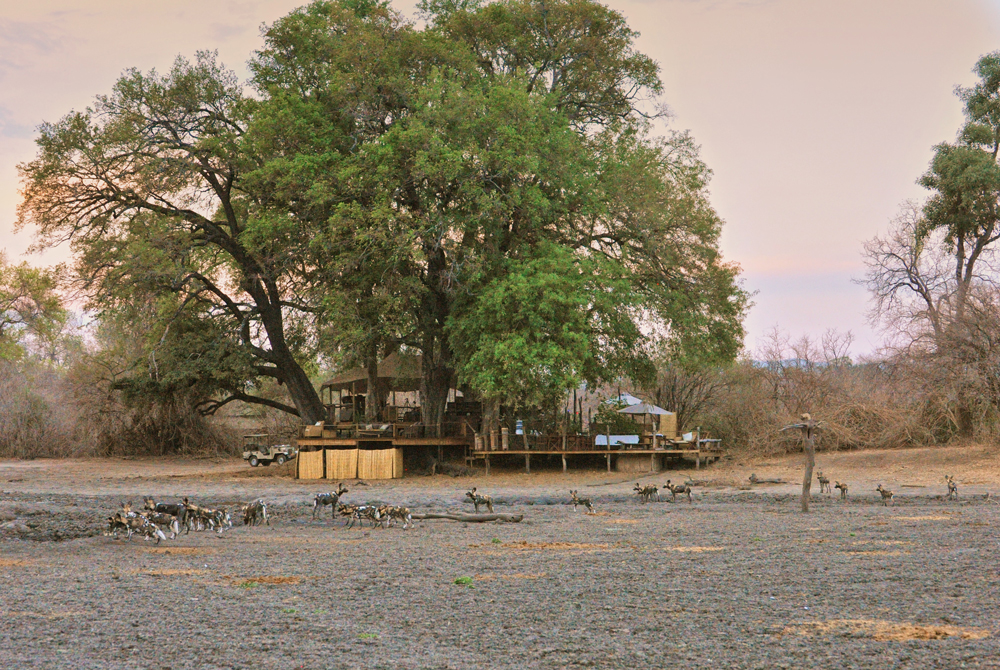 kanga-camp-mana-pools-zimbabwe