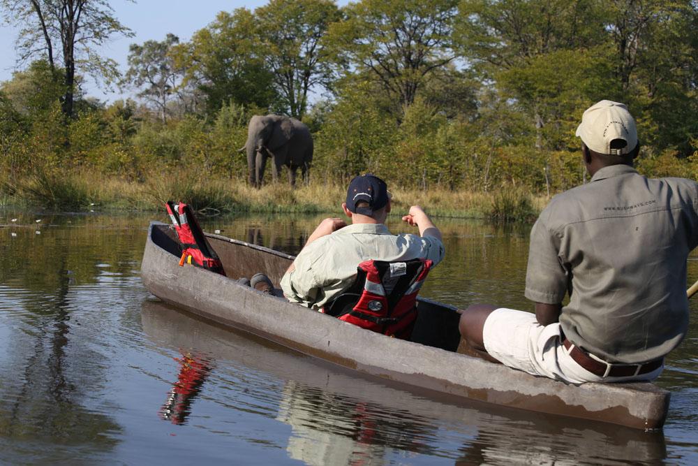 boat safari, Botswana, elephant, river, wildlife