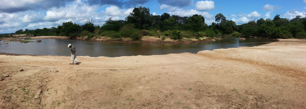 The banks of the Great Ruaha river