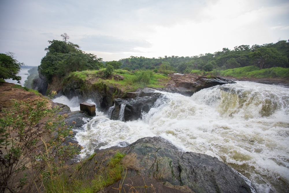 The iconic Murchison Falls
