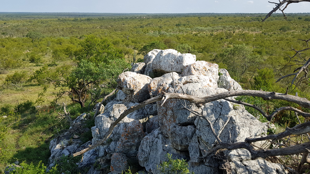 Views over Manyeleti from Dixie Koppie