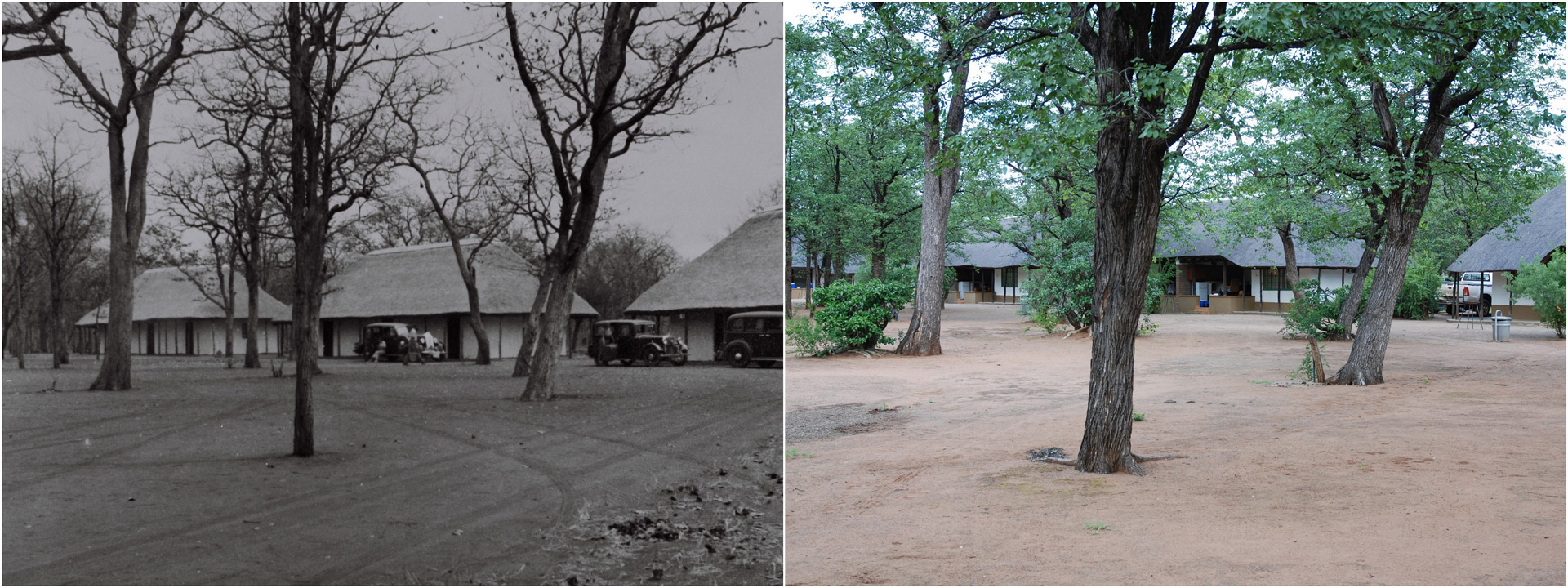 Then and now at Shingwedzi Camp in 1935 and present