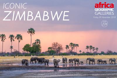Iconic Zimbabwe gallery