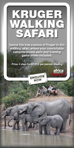 Kruger Wilderness Walking safari