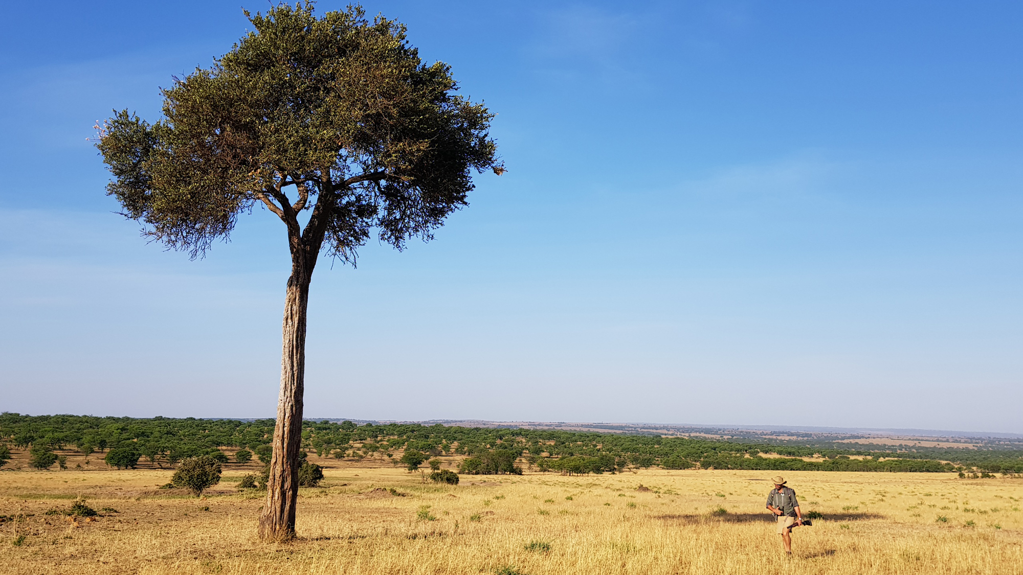 Wayo Africa director Jean du Plessis striding across the Serengeti