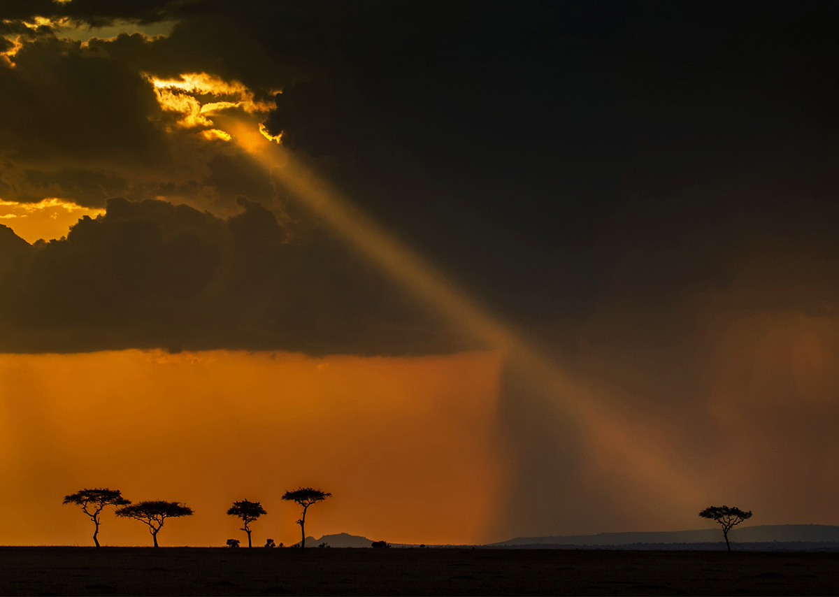 Sunset in Serengeti National Park, Tanzania © Hesté de Beer
