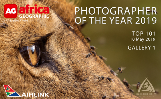 Photographer of the Year 2019 Top 101 Gallery 1