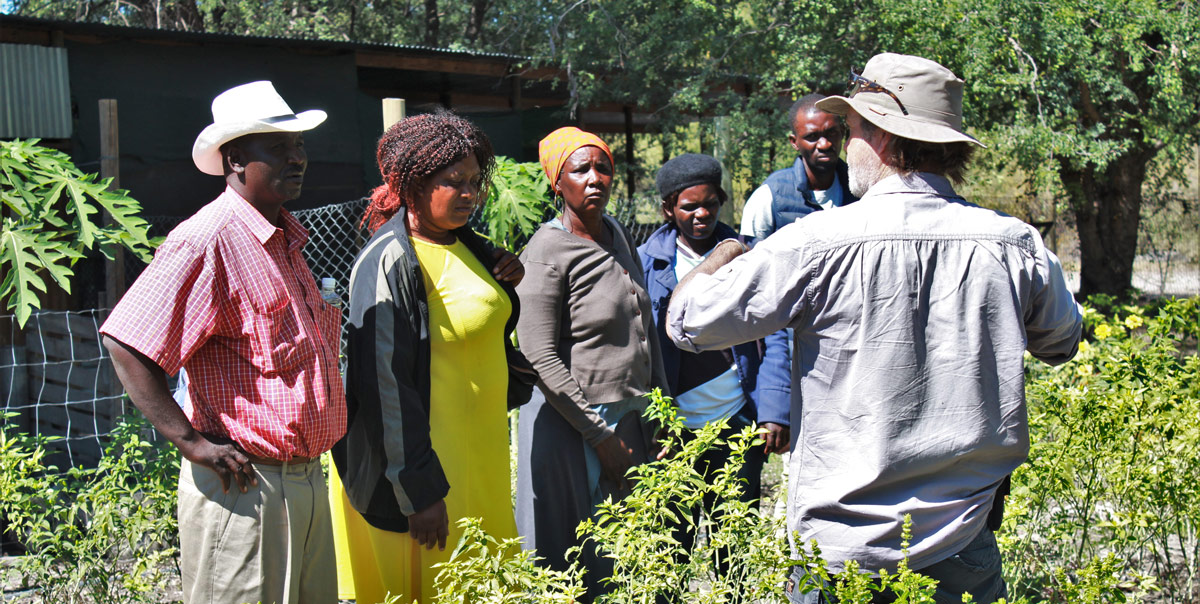 A chili farming workshop hosted by Elephants for Africa and hosted on Tshilli Farm outside Maun © Elephants for Africa
